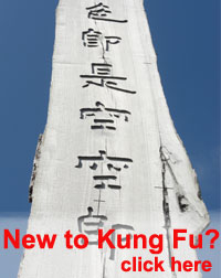New To Kung Fu